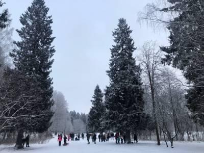 Синоптик спрогнозировал, ждать ли жителям Петербурга сильных морозов в январе