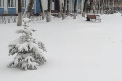 В Смоленской области погода обещала зимние дожди 24 января