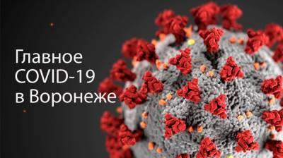 Воронеж. Коронавирус. 24 января