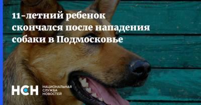 11-летний ребенок скончался после нападения собаки в Подмосковье
