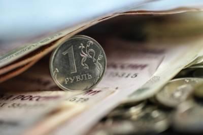 Прожиточный минимум на душу населения в 2021 году составит 11 653 руб.