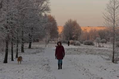 Энергетики перешли на усиленный режим из-за морозов в Петербурге