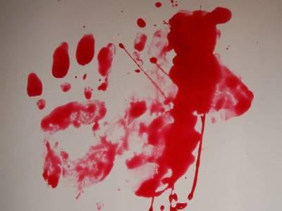 Житель Вологодской области выстрелил в голову жене на глазах сына