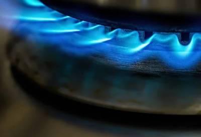 Президент Сербии попросил Россию о самой благоприятной цене на газ в Европе для своей страны