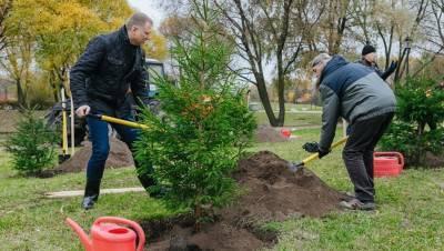 Петербуржцам предложили своими руками озеленить 32 парка и сквера
