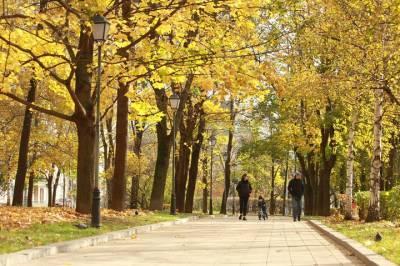 Названы семь лучших экомаршрутов Москвы для осенних прогулок
