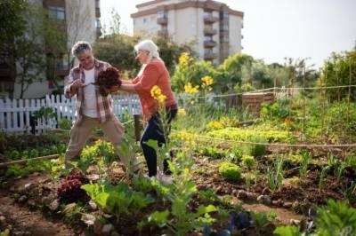Жильё со встроенными огородами начнут строить в России