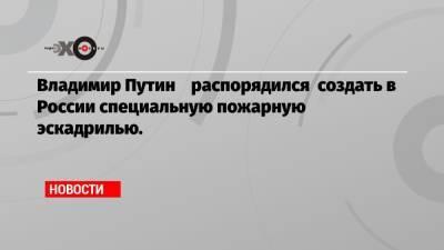 Владимир Путин распорядился создать в России специальную пожарную эскадрилью.