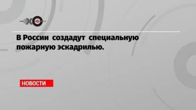 В России создадут специальную пожарную эскадрилью.