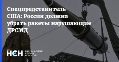 Спецпредставитель США: Россия должна убрать ракеты нарушающие ДРСМД