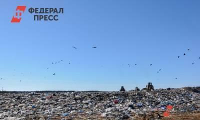 В Омске рекультивируют крупную свалку