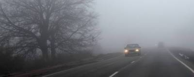 В Омской области горят торфяники, что влияет на безопасность дорожного движения в регионе