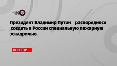 Президент Владимир Путин распорядился создать в России специальную пожарную эскадрилью.