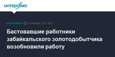 Бастовавшие работники забайкальского золотодобытчика возобновили работу