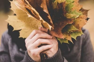 Врач Болибок предупредил россиян об опасности опавшей листвы для здоровья