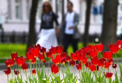 Какой будет весна 2022: скупое тепло и ливни. Прогноз погоды на следующую весну