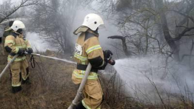 Путин наградил пятерых жителей Якутии за помощь при тушении лесных пожаров