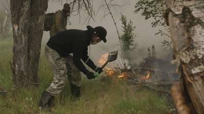Путин наградил жителей Якутии за помощь в тушении лесных пожаров