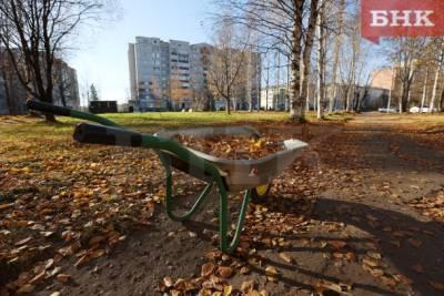 Иммунолог предупредил об опасном свойстве опавшей листвы