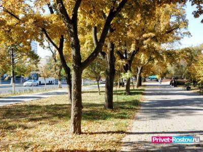 В Ростове-на-Дону на выходных 16 и 17 октября потеплеет до +19 градусов
