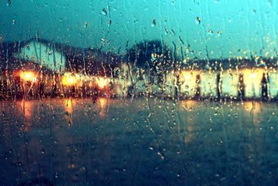 Ярославль ждут дождливые выходные