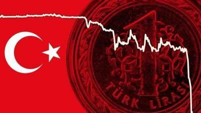 Курс турецкой лиры резко обвалился после высылки западных послов
