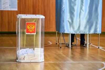Названа дата досрочных выборов глав Владимирской и Тамбовской областей
