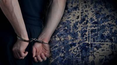 Задержанный за убийство семьи и нападение на отдел полиции под Воронежем признал вину