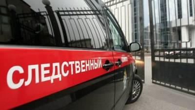 СК предъявил обвинение участникам избиения пассажира в метро Москвы
