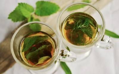 Американские ученые обнаружили в зеленом чае разрушающее раковые клетки вещество