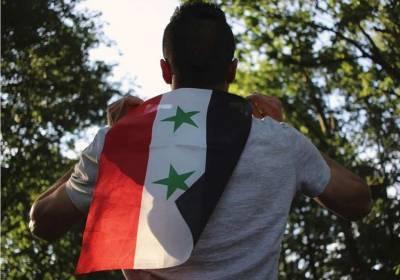 Россия, Турция и Иран выступают за неделимость Сирии