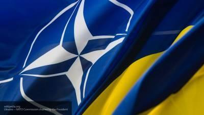 Военный эксперт назвал Грузию, Украину и Молдавию пушечным мясом НАТО