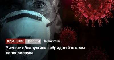 Ученые обнаружили гибридный штамм коронавируса
