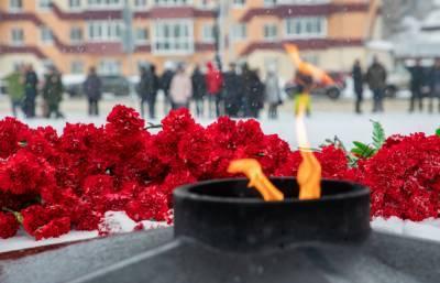 На Сахалине и Курилах отметят День защитника Отечества