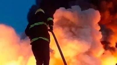 Пожар в частном доме под Ногинском унес жизни четырех человек
