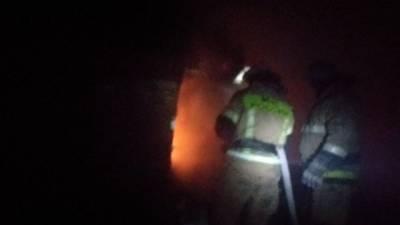 Ночной пожар в Пензенской области унес жизни двух человек