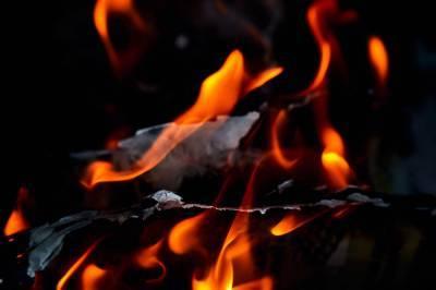 Пожар в Подмосковье унес жизни двоих детей и взрослых