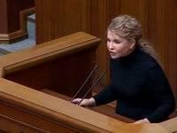 «Батькивщина» будет оспаривать в КС закон, благодаря которому Витренко получил все полномочия вице-премьера – Тимошенко