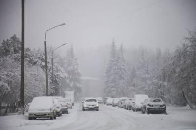 Снег, метель и порывистый ветер: в Томской области объявлено штормовое предупреждение