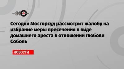 Сегодня Мосгорсуд рассмотрит жалобу на избрание меры пресечения в виде домашнего ареста в отношении Любови Соболь