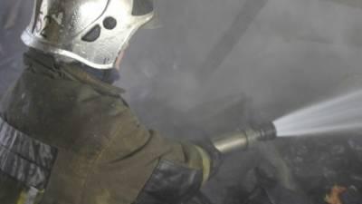 Пожар в Ульяновской области унес жизни мужчины и годовалого ребенка