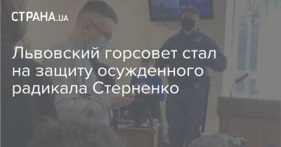 Львовский горсовет стал на защиту осужденного радикала Стерненко