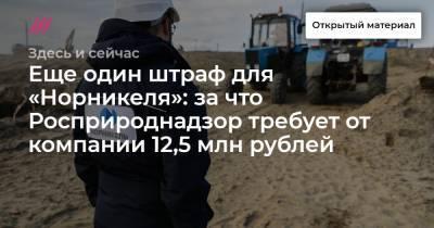 Еще один штраф для «Норникеля»: за что Росприроднадзор требует от компании 12,5 млн рублей