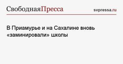 В Приамурье и на Сахалине вновь «заминировали» школы