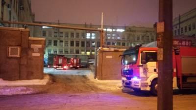 Ночной пожар унес жизни жительницы Петербурга и ее сына