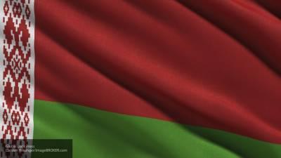 Политолог объяснил, как Белоруссия отреагирует на агрессию Украины в Донбассе