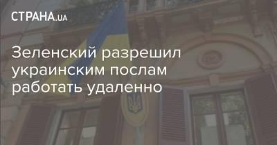 Зеленский разрешил украинским послам работать удаленно