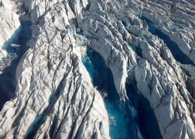Тревожный сигнал для человечества: глубоко подо льдом ученые нашли растения