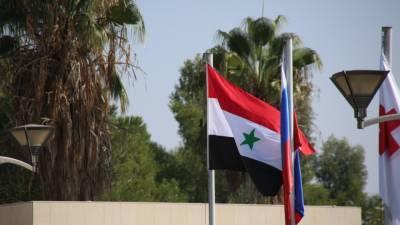 Американский политик рассказал о позиции США по выборам в Сирии
