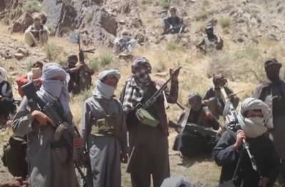 В Сенате США потребовали рассекретить сведения о предполагаемых «выплатах» России талибам